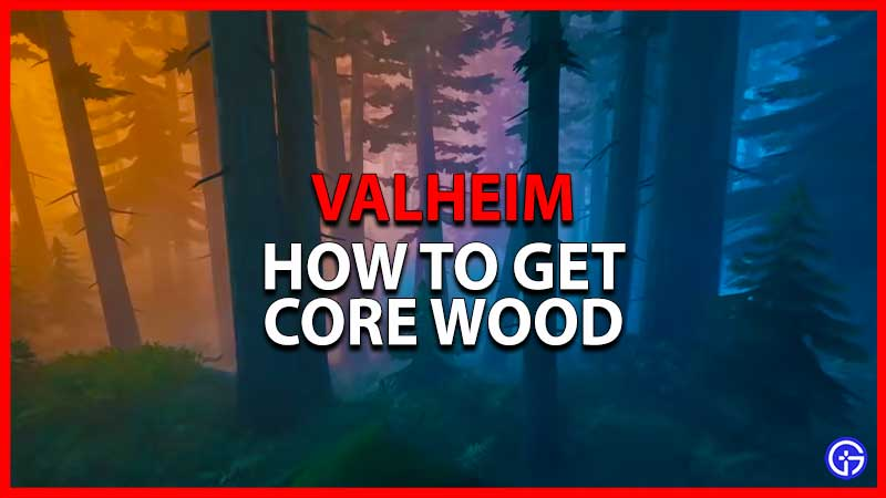 core wood in Valheim