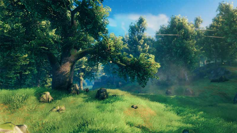 Do Trees Respawn Or Grow Back In Valheim