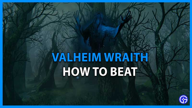 How to Beat Wraith in Valheim