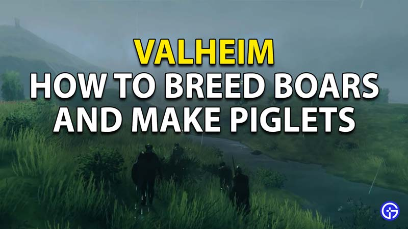 How to Tame Boars and Breed Piglets