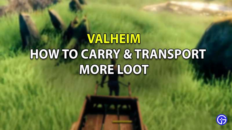 how to carry transport more loot valheim