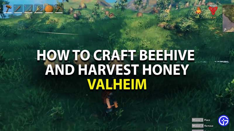 how to craft beehive and harvest honey in valheim