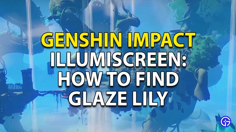 How to find the glaze lily treasures in genshin impact