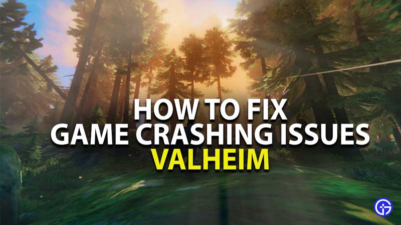 how to fix game crashing issues in valheim