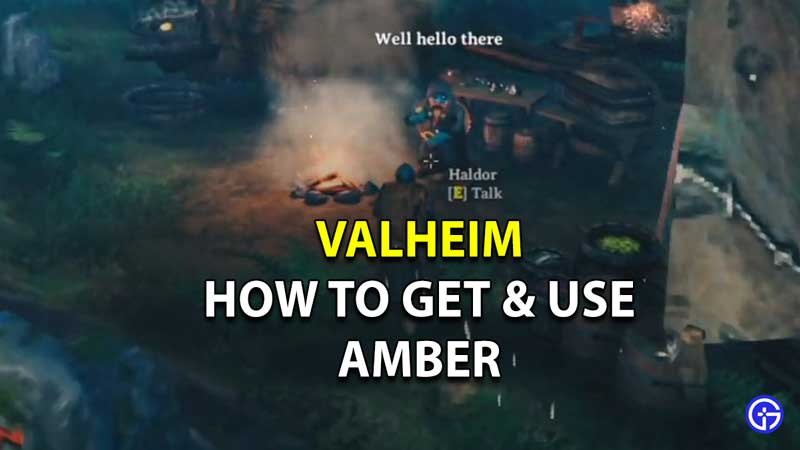 how to get and use amber in valheim