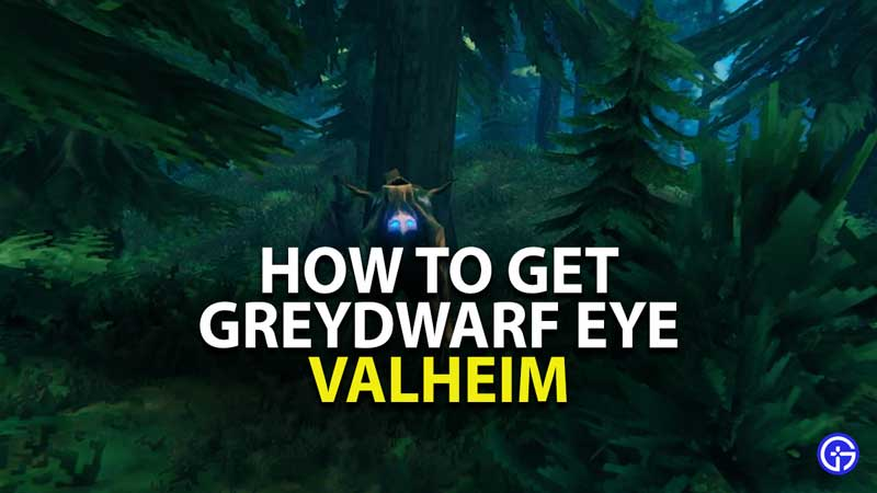 how to get greydwarf eye in valheim