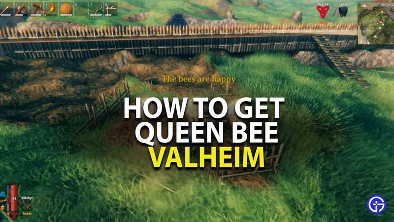 how to get queen bee in valheim