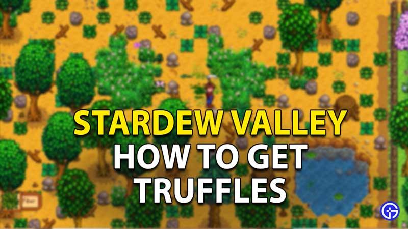 How to get truffles in Stardew Valley