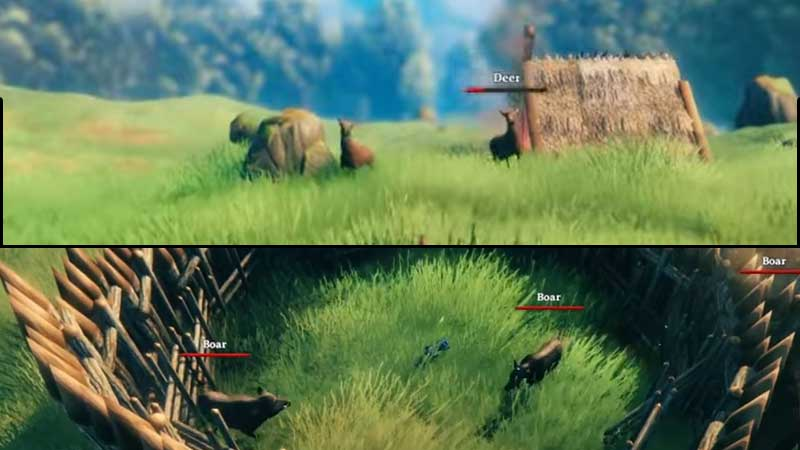 how to kill boars and deer valheim