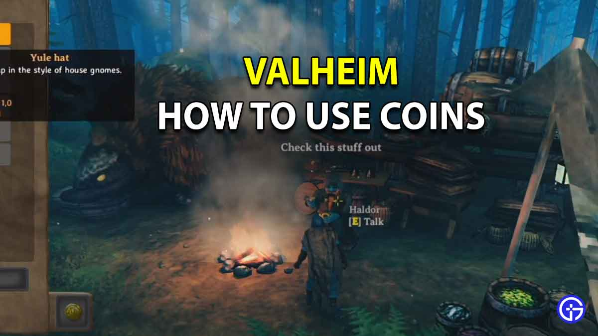 How To Use Coins In Valheim