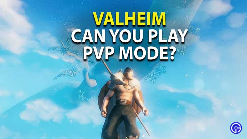 is there pvp in valheim