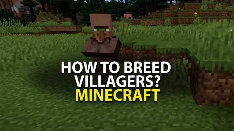 Minecraft Breed Villagers