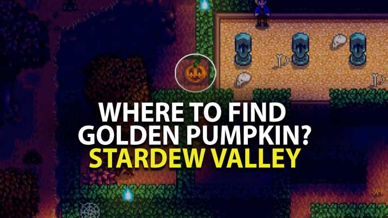 Stardew Valley Golden Pumpkin Location