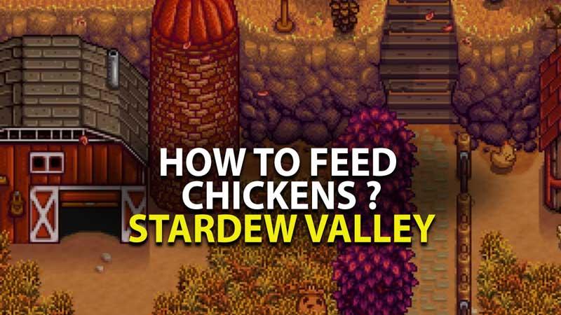 Stardew Valley Chicken Farming Guide