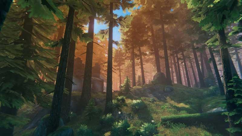 valheim black forest