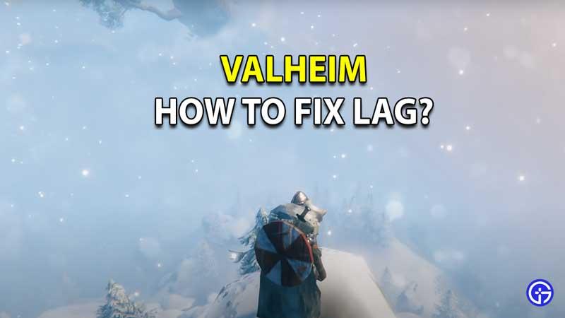 valheim fix lag