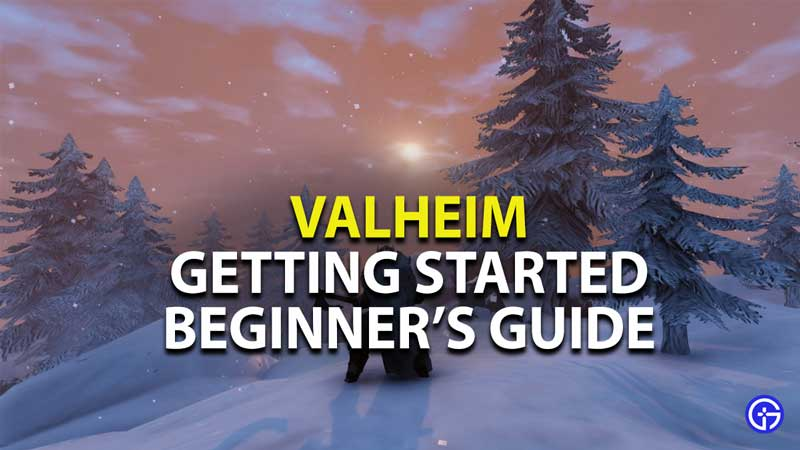 Valheim Getting Started: First Day Guide