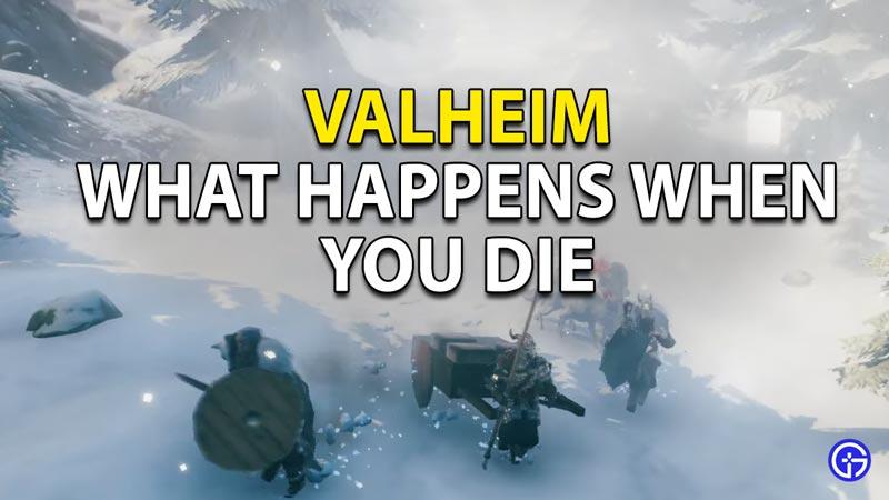 Valhiem Respawn Guide