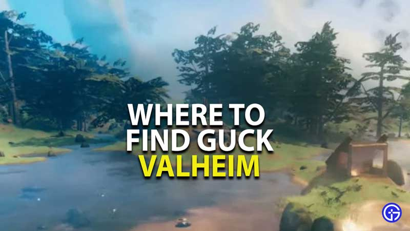 where to find guck in vahleim