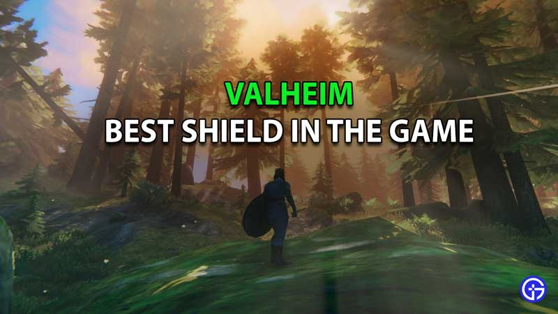 Best Shield In Valheim