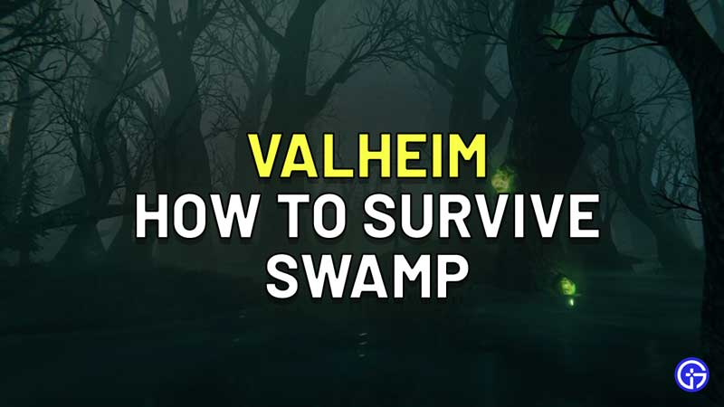 How To Survive The Swamp In Valheim