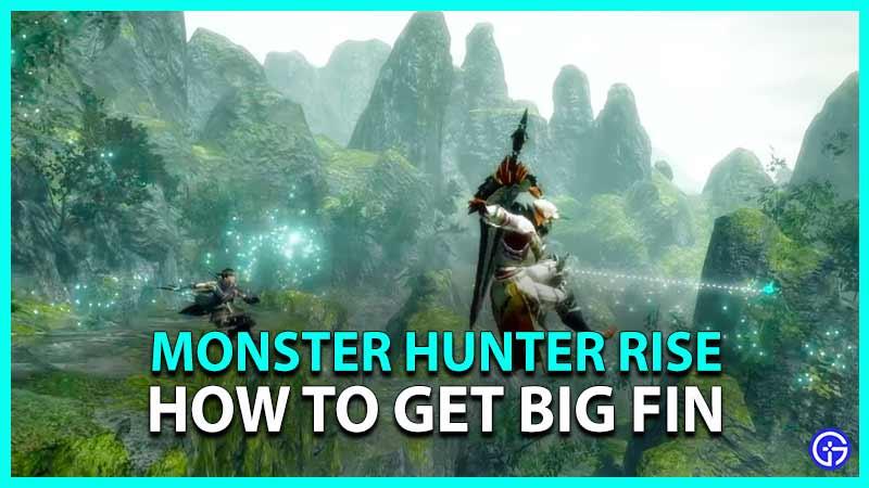 MH Rise Big Fin