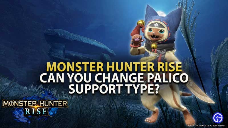 MH Rise Palico Support Type Guide