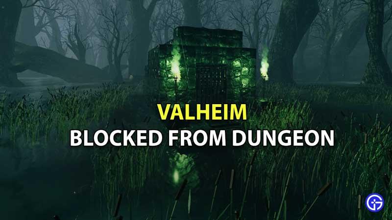 Valheim Blocked From Dungeon