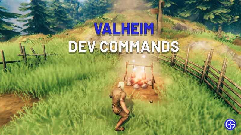 Valheim Dev Commands