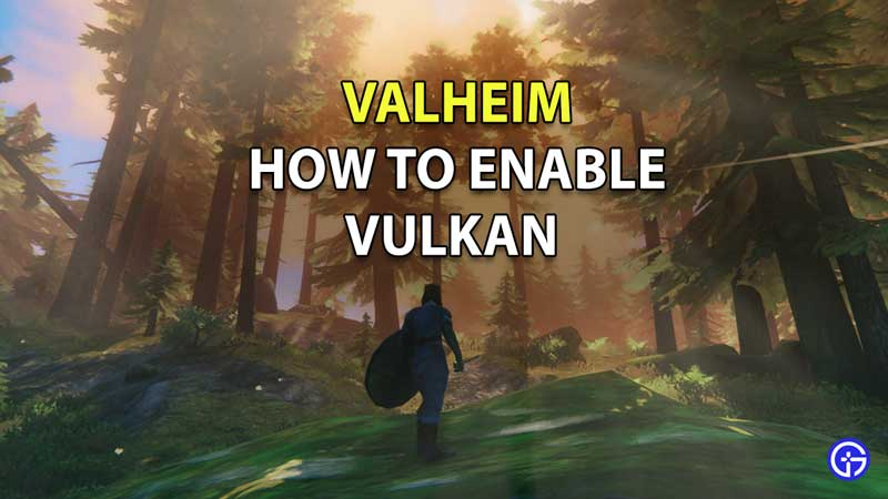 How to Turn on Vulkan API in Valheim