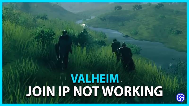 Valheim Join IP Not Working