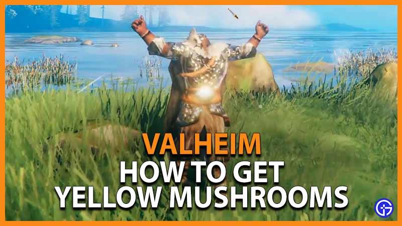 Valheim Yellow Mushrooms