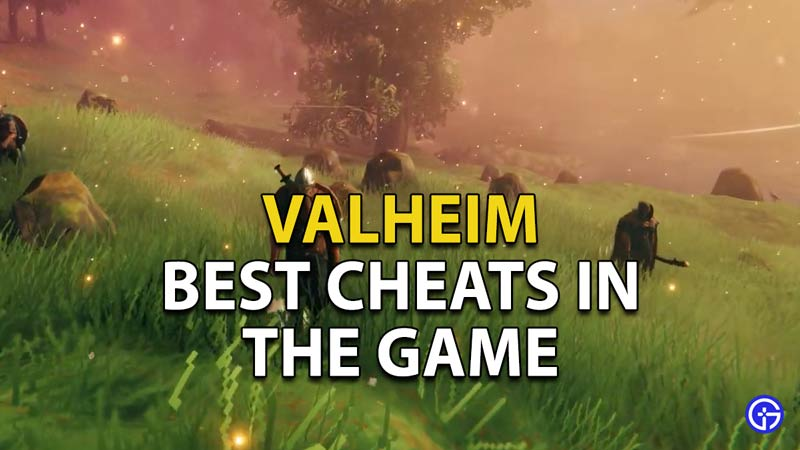 What are the Best Cheats in Valheim