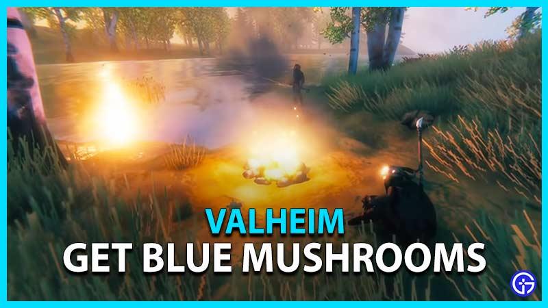 blue mushroom valheim