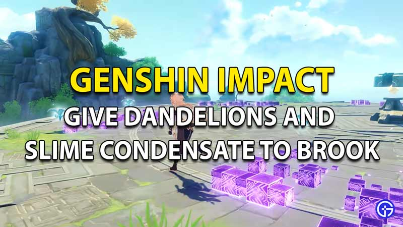 How to give dandelion seeds an slime condensate to Brook in Genshin Impact