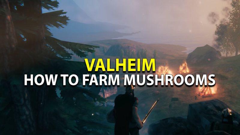 Learn to farm Mushrooms in Valheim