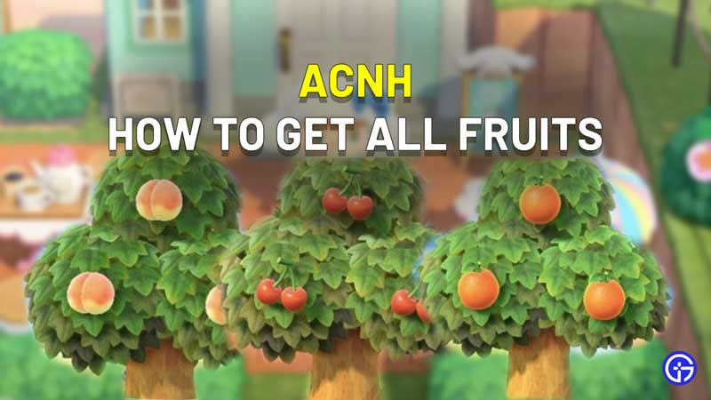 How To Get All Fruits In ACNH
