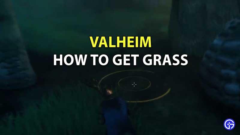 valheim how to get grass to grow