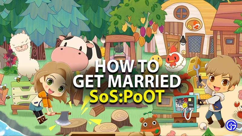 how to get married in story of seasons pioneers of olive town