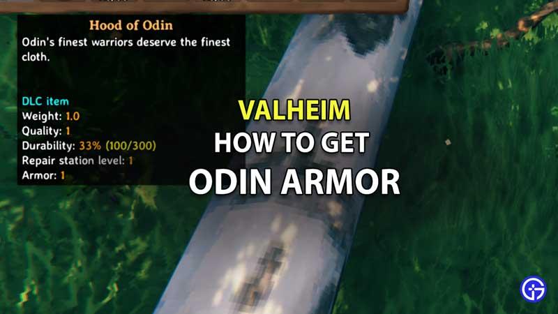how to get odin armor set valheim hood and cape