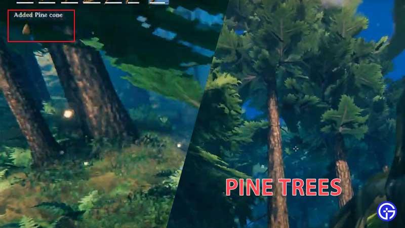how to farm pine valheim