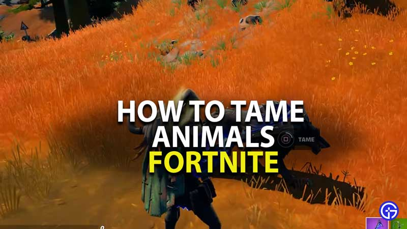 how to tame animals in fortnite chapter 2 season 6