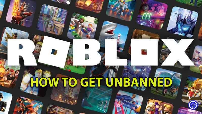 how to unban account roblox
