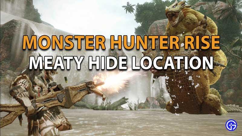 Monster Hunter Rise Meaty Hide location