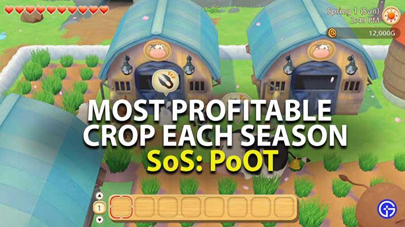 most profitable crop each season in story of seasons pioneers of olive town