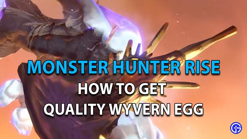 How To Get Quality Wyvern Egg In Monster Hunter Rise
