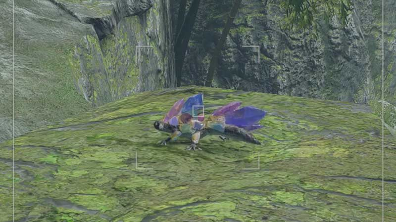 Monster Hunter Rise Rock Lizard Location For Endemic Life Request