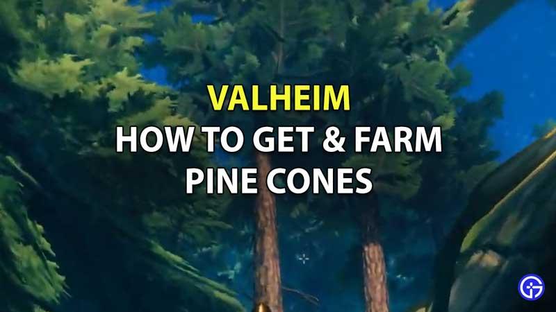 How to Get Pine Cones in Valheim