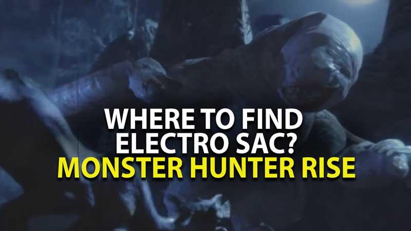 Monster Hunter Rise Electro Sac