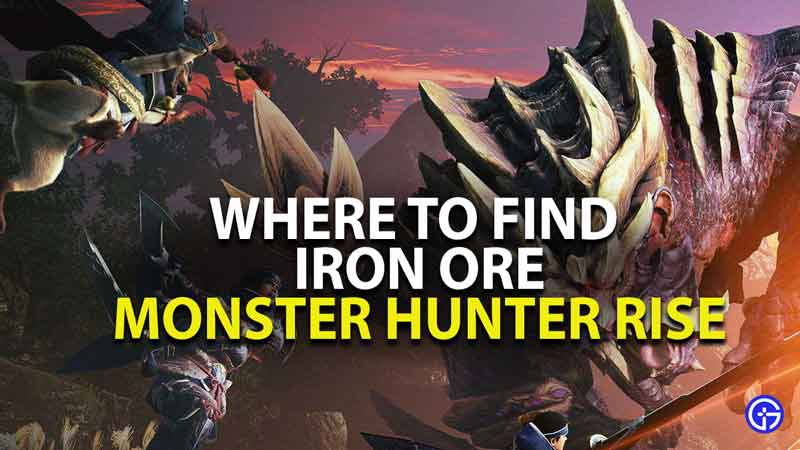 where to find iron ore in monster hunter rise